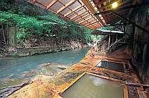 四季を写す自然に囲まれた露天風呂で温泉を満喫!