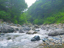 【釣りプラン/お弁当付】渓流釣りの穴場中津川渓谷へ
