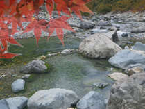 ■グループ旅行■3名以上のグループでお得♪紅葉が一番美しい10月を『特別料金』でご宿泊