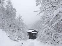 *[冬・当館]根雪が11月下旬から5月上旬まで続く秋山郷