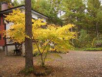紅葉に囲まれた別荘