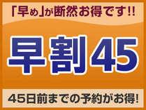 早割り,東京都,ミレニアム 三井ガーデンホテル 東京