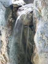 悠然と湧き出る温泉。やわらかい泉質が特徴的!!