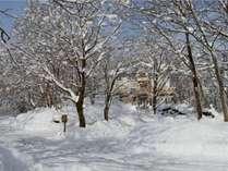 ☆ 冬の森の中の特別な時間プラン♪ 【二食付】 「じゃらん限定」