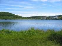 白樺湖畔は景色最高です
