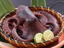 追加料理『蛸の丸茹で』 南知多ならでは!丸ごと丸茹で豪快に!(一杯4000円税別※事前の予約が必要)