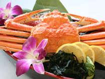 <おひとり様ずわい蟹まるごと一杯付>はまゆう会席+ずわい蟹付プラン《9月~11月》