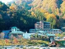 紅葉に染まるひるがみの森。昼神温泉郷の紅葉は10月下旬~です★