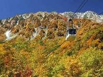 紅葉の大観峰