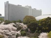 桜の時期のグランドプリンスホテル新高輪