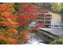 紅葉・黄葉で彩られるトムラウシ温泉