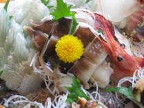 とり貝と季節のお造り