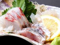 旬魚のお造り 地元で揚がった鮮度抜群の魚介類を使用します!