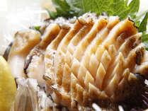 新鮮あわびはお刺身でお召し上がりください!歯応えがたまりません!