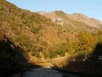 ◆当館周辺の景色◆田舎の自然満喫♪スゥ~っと美味しい空気を吸ってリフレッシュして下さい★