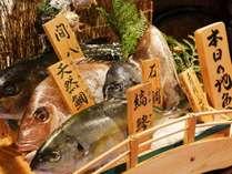 お造りは地魚5種類の中からお好きな2種類をチョイス