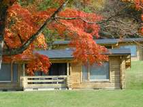 コテージ外観と赤く染まったもみじ。紅葉は例年10月中旬以降がピーク。詳しくはお問い合わせください。