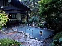 【母屋露天風呂】森林浴(紅葉浴)のできる大露天風呂「さくら湯」。目に鮮やかな緑が癒されます