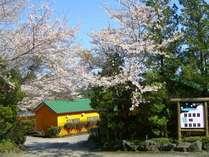 桜のお宿外観