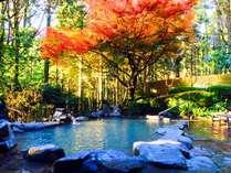 大露天風呂の紅葉