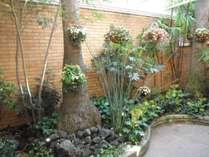 ガーデン1