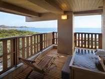 露天風呂付和室(15畳+広縁+露天風呂)の露天風呂,昼景