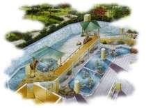 大浴場『白糸の美肌湯』