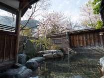 *露天・男性/春は目の前の桜の木を見ながらの花見露天がとってもおすすめ。絵のような美しさが広がります