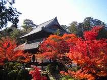 宝福寺。紅葉の名所。雪舟が幼いころ涙で鼠の絵を描いたことでも知られている寺院。