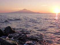 花の美しい礼文島や利尻富士山のある利尻島へもアクセス可能です