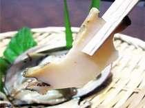 コリコリ生アワビ & 引きたて鯛と旬魚舟盛 さらに、まるごとズワイガニ付 ≪仲居サービス付 18,000円~≫