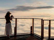 空テラス山頂 雲海