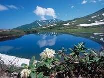 ■天上の楽園 「旭岳」&「姿見の池」