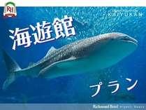 【Richmond×海遊館】ジンベイザメに会いに行こう!,大阪府,リッチモンドホテル東大阪