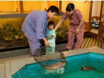 *ご注文の魚を、お客様ご自身で水槽から網ですっくて頂くことが出来ます。