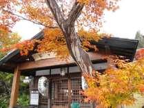 紅葉は10月半ばごろから11月の頭頃にかけてです。