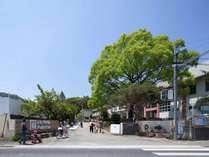 いいかねPalette (福岡県)