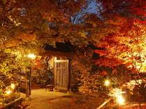 草菴秋の風景