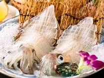 透き通るほど新鮮なイカ活造り♪コリコリした食感と甘味が絶品!