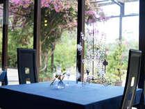 レストラン MIMOSA-Garden