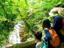 爽やかな軽井沢で家族旅行を満喫!
