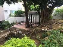 中庭にがじゅまるの木(喫煙場所)