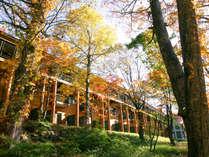 *【秋】木々が一斉に新緑から黄、橙、赤へと変えゆく季節。まるで異世界に飛び込んだかのよう。