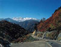 【ドライブ旅】白山白川郷ホワイトロード片道無料★大自然の中を走り抜けよう!