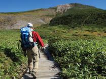 【登山応援】お昼のラーメン&ミネラルウォーター付!おにぎり弁当で早朝出発も安心♪開山1300年の白山へ!