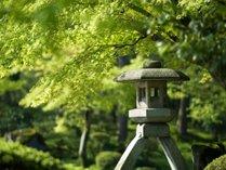 日本三名園の1つ、名勝・兼六園は、四季折々の風情を醸し出します。