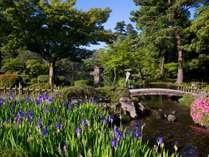 新緑の季節の兼六園散策をお楽しみください!(5月~6月頃イメージ)