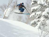 安比高原スキー場。深雪も、さらさらも、多彩なコースと雪質が自慢です!