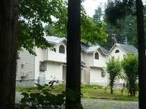 アメリカン ゲストハウス 木々に囲まれ静かなロケーション