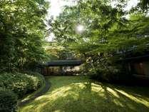 苔生す中庭